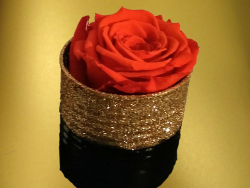 Red Preserved Rose