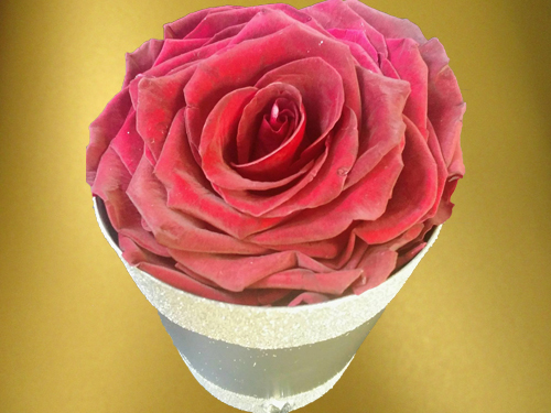 Deep Red Rose in small box